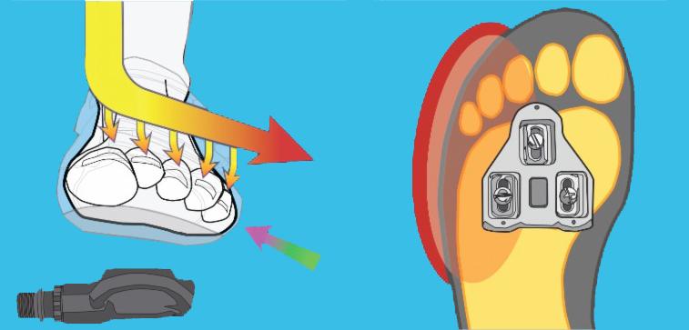 Effect van afstelling schoenplaatjes tijdens fietsafstelling